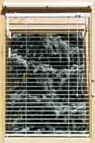 Jalousien mit 35 mm Lamellenbreite